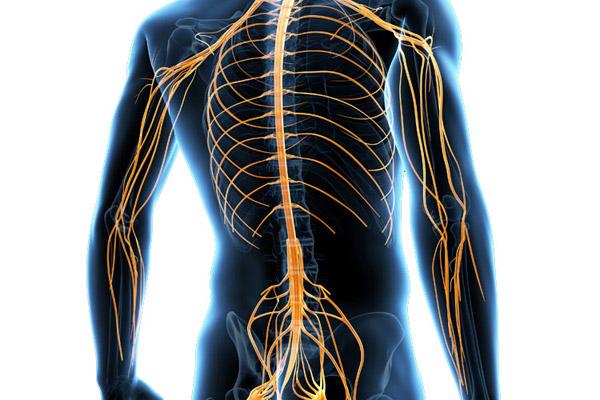 Nerve Stimulation Technology Neuromodulation