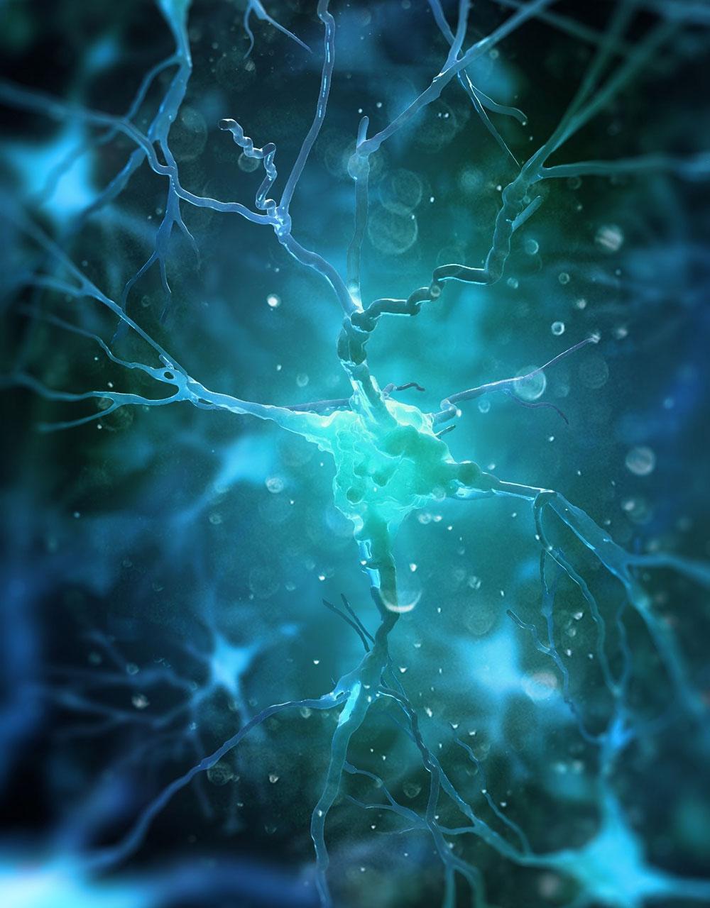 Neuromodulaatio