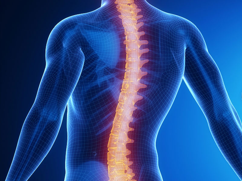 Spinal Cord Stimulation Products
