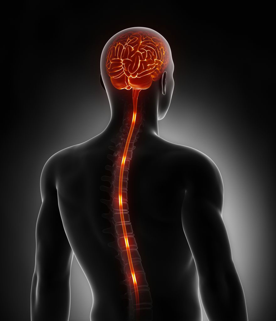 What is Spinal Cord Stimulation